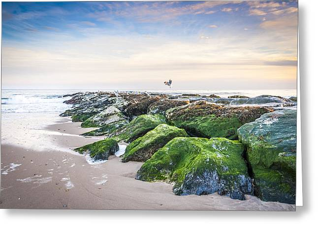 Hamptons Greeting Cards - Georgica East Hampton Greeting Card by Ryan Moore