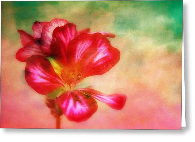 Red Geraniums Greeting Cards - Geranium Flower Blossom Textured Painterly Greeting Card by Clare VanderVeen