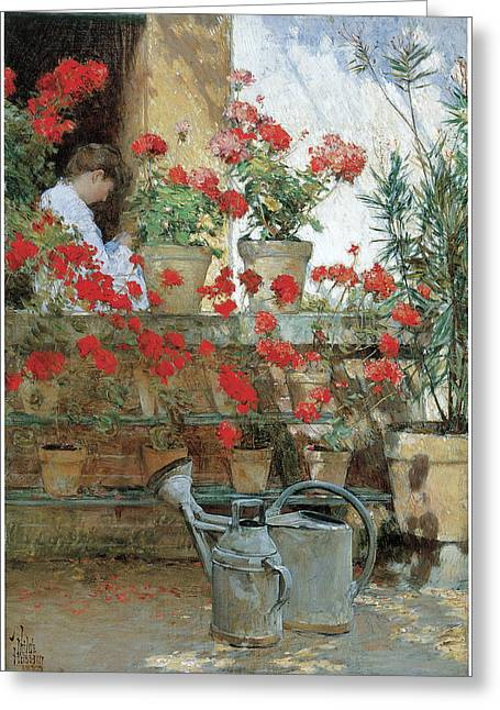 Childe Greeting Cards - Geraniums Greeting Card by Childe Hassam