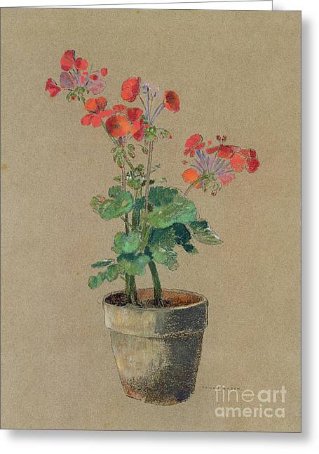 Flower Still Life Prints Greeting Cards - Geraniums in a pot  Greeting Card by Odilon Redon