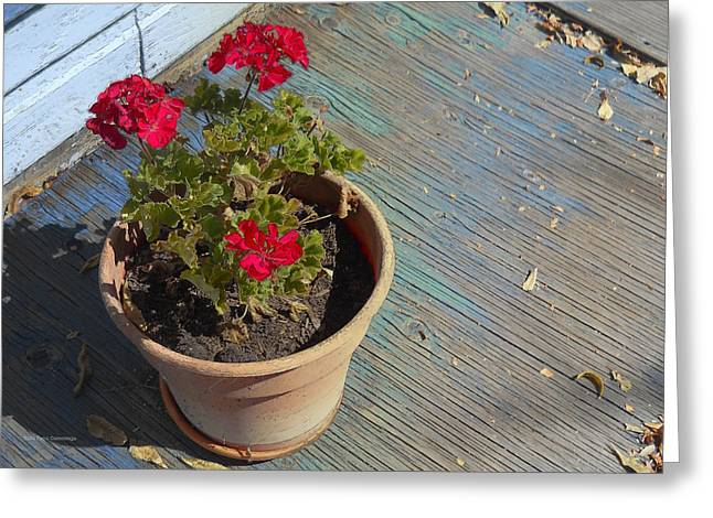 Red Geraniums Digital Greeting Cards - Geraniums on Blue Porch Greeting Card by Faye Cummings