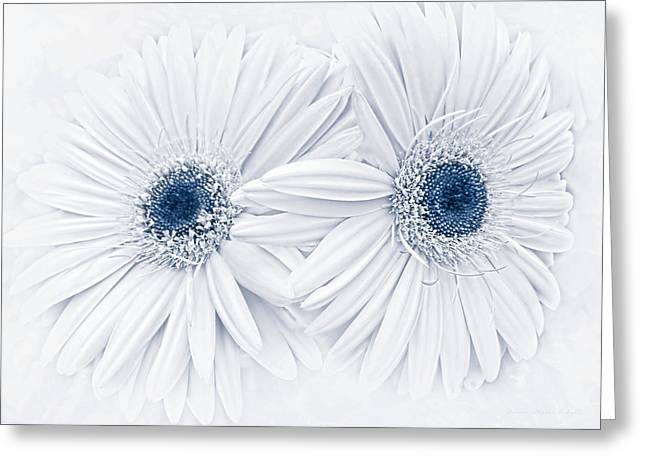 Light And Dark Greeting Cards - Gerber Daisy Flowers in Blue Greeting Card by Jennie Marie Schell