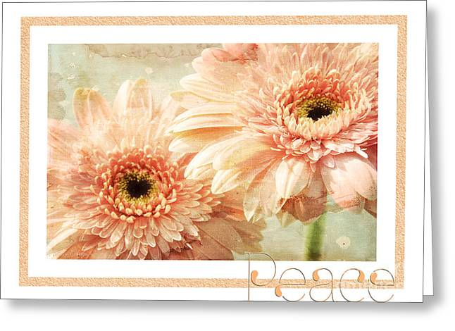 Close Up Floral Mixed Media Greeting Cards - Gerber Daisy Peace 2 Greeting Card by Andee Design
