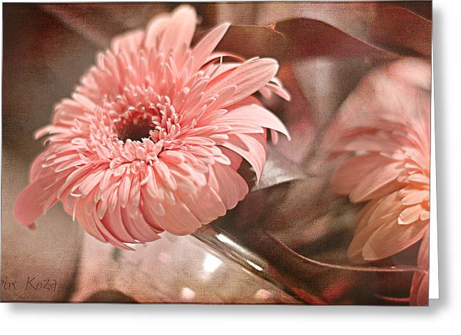Texture Floral Pyrography Greeting Cards - Gerbera Blush Greeting Card by Robin Koza