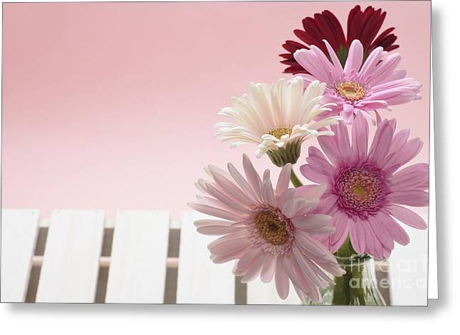 Early Pyrography Greeting Cards - Gerbera Greeting Card by Boon Mee