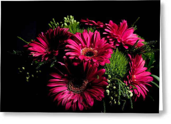 Purlple Greeting Cards - Gerbera Daisy Greeting Card by Theodore Lewis