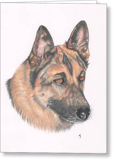 Working Dog Drawings Greeting Cards - German Shepherd Dog Greeting Card by Yvonne Johnstone