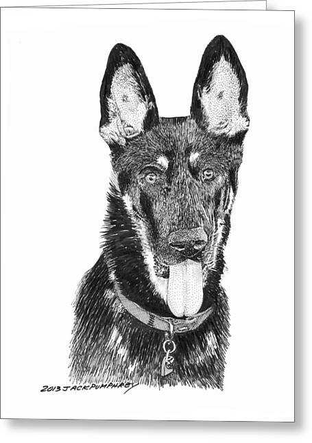Breed Of Dog Drawings Greeting Cards - German Shepherd Kimo Greeting Card by Jack Pumphrey