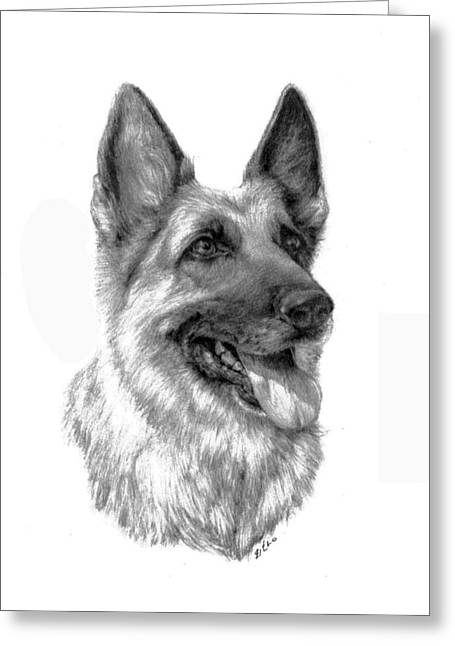 Working Dog Drawings Greeting Cards - German Shepherd Greeting Card by Lou Ortiz