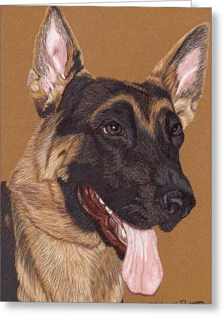 Working Dog Drawings Greeting Cards - German Shepherd Vignette Greeting Card by Anita Putman