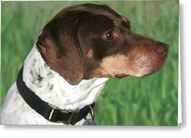 Short Hair Greeting Cards - German Shorthaired Pointer Greeting Card by Paul Tagliamonte