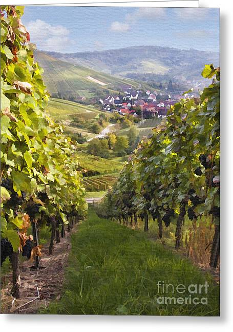 Vineyard Digital Greeting Cards - German Vineyard Greeting Card by Sharon Foster