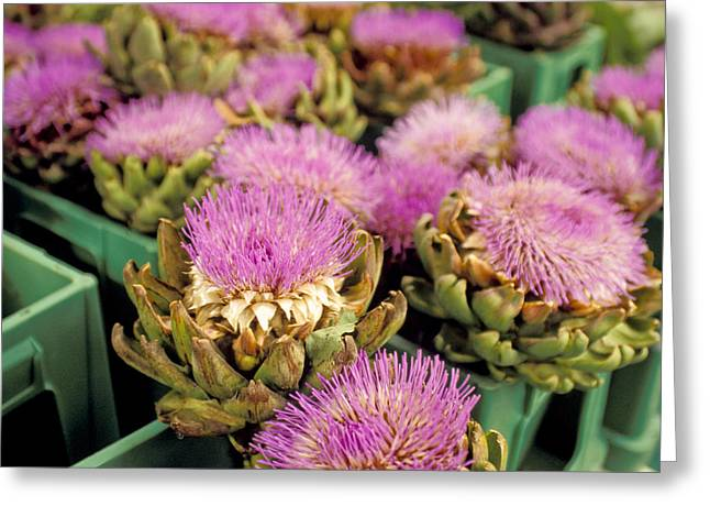 Flowers On Head Greeting Cards - Germany Aachen Munsterplatz Artichoke Flowers Greeting Card by Anonymous
