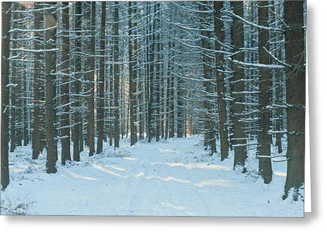 Snowy Day Greeting Cards - Germany Greeting Card by Panoramic Images