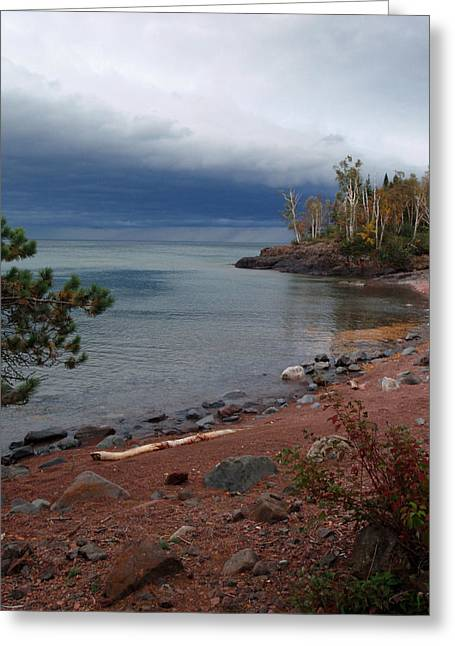 Peterson Nature Photography Greeting Cards - Get Lost in Paradise Greeting Card by James Peterson