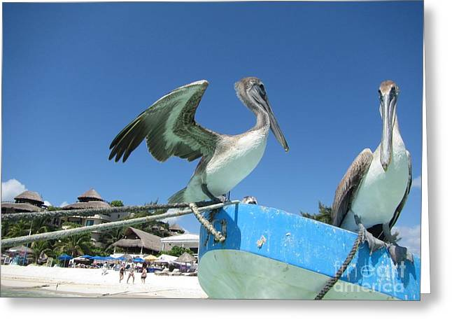 Seacape Greeting Cards - Get Ready Here He Comes Again Greeting Card by John Malone
