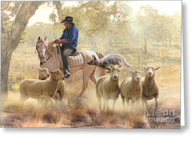 Heeler Greeting Cards - Get Up There Blue Greeting Card by Trudi Simmonds