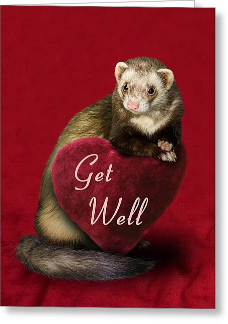 Animals Love Greeting Cards - Get Well Ferret Greeting Card by Jeanette K