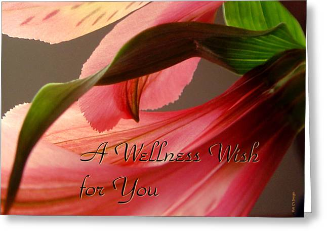 Get Greeting Cards - Get Well Flower Greeting Card by Kae Cheatham