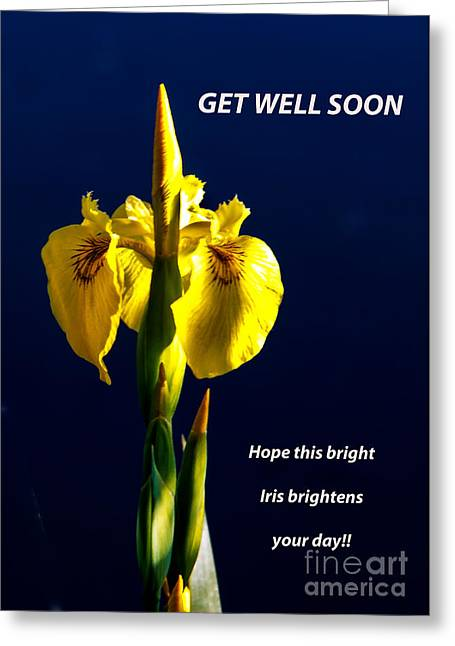Get Well Soon Greeting Cards - Get Well Soon Greeting Card by Robert Bales