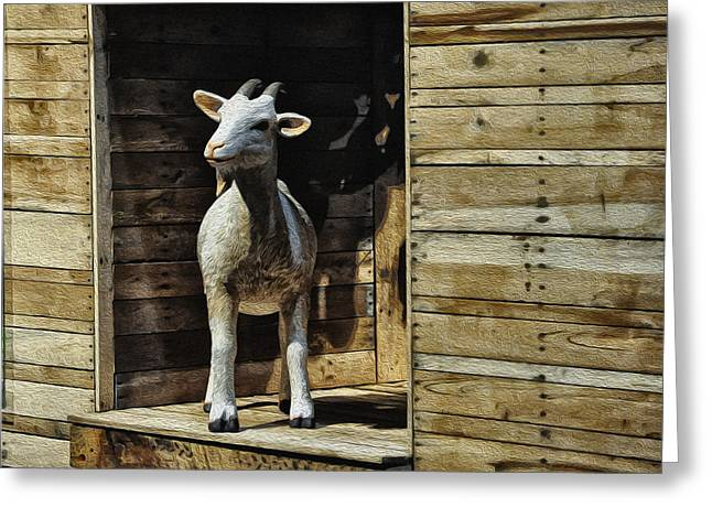 Get Greeting Cards - Get Your Goat Greeting Card by Bill Cannon