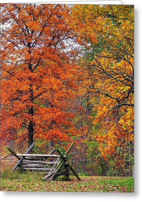 Sickles Avenue Greeting Cards - Gettysburg at Rest - Autumn Colors in the Rose Woods Along Sickles Avenue - Autumn Early Afternoon Greeting Card by Michael Mazaika