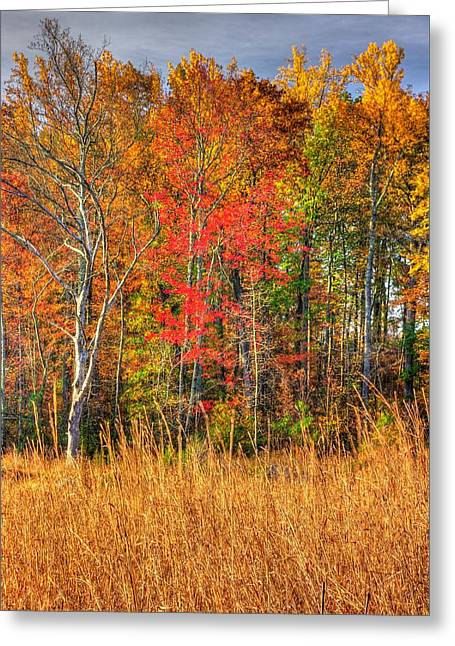 Civil Greeting Cards - Gettysburg at Rest - Early Morning Autumn Colors 2A - The Rose Woods Greeting Card by Michael Mazaika