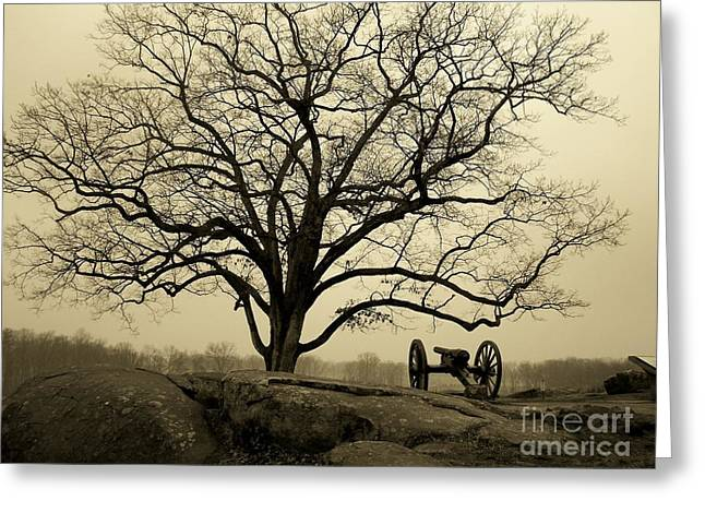 Devils Den Greeting Cards - Gettysburg Canon Greeting Card by Edna Weber