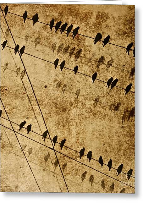 Ghost Birds On A Wire Greeting Card by Deborah Talbot - Kostisin