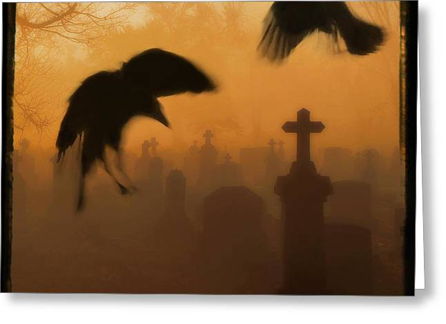 Ghost Crows 2 Greeting Card by Gothicrow Images
