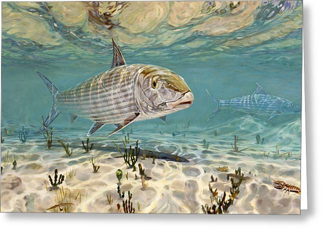 Underwater View Paintings Greeting Cards - Ghost Hunter Greeting Card by Don  Ray