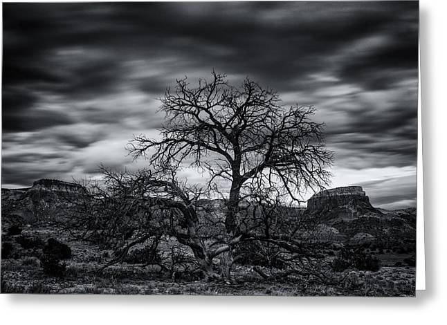 Chama Greeting Cards - Ghost Ranch Abiquiu New Mexico Georgia on my Mind Greeting Card by Silvio Ligutti