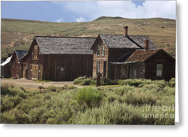 Pioneer Park Greeting Cards - Ghost Town In Bodie Historic State Park Greeting Card by Ellen Thane