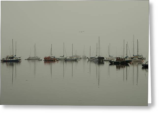 Peaceful Scene Greeting Cards - Still Water Greeting Card by Marilyn Wilson