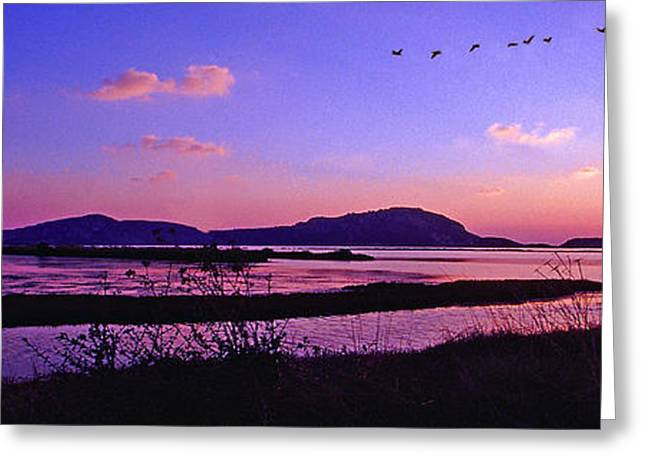 On The Beach Greeting Cards - Gialova wetland Greeting Card by George Rossidis