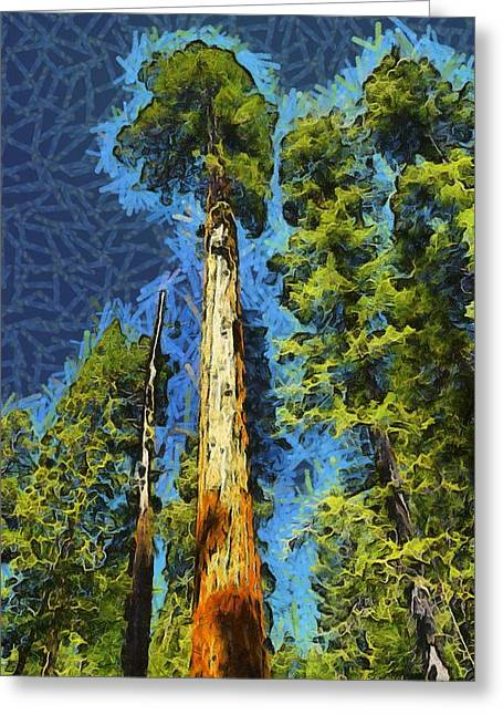 Tree Roots Greeting Cards - Giant Along The Trail Abstract Greeting Card by Barbara Snyder
