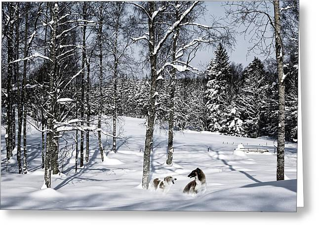 Sight Hound Greeting Cards - Giant Dogs Playing In The Snow Greeting Card by Christian Lagereek