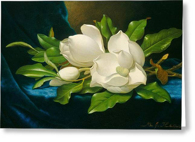 Egg Sculpture Greeting Cards - Giant Magnolias on a Blue Velvet Cloth Greeting Card by Martin Johnson Heade