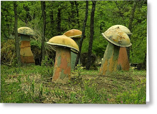 Tony Grider Greeting Cards - Giant Mushroom Forest Greeting Card by Tony Grider