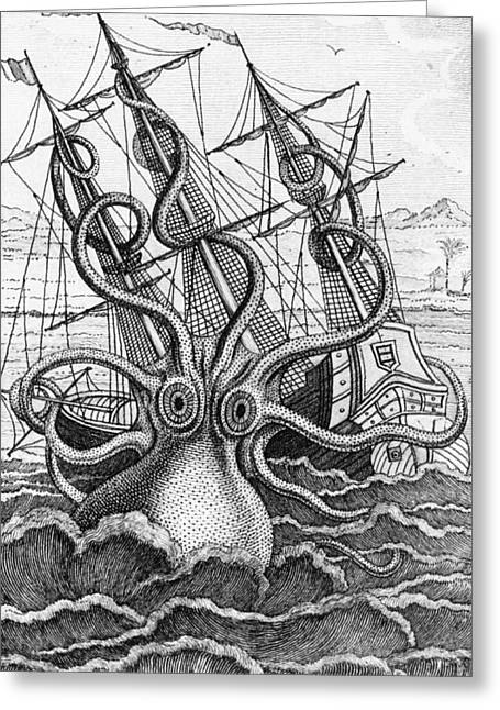 Giant Octopus Illustration From L Histoire Naturelle Generale Et Particuliere Des Mollusques Greeting Card by French School