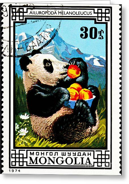 Postage Stamp Greeting Cards - Giant Panda Greeting Card by Jim Pruitt