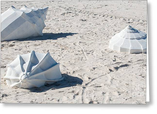 Liberal Greeting Cards - Giant Shell Sculpture - Key West  Greeting Card by Ian Monk