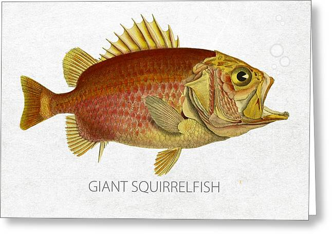 Salt Water Greeting Cards - Giant Squirrelfish Greeting Card by Aged Pixel