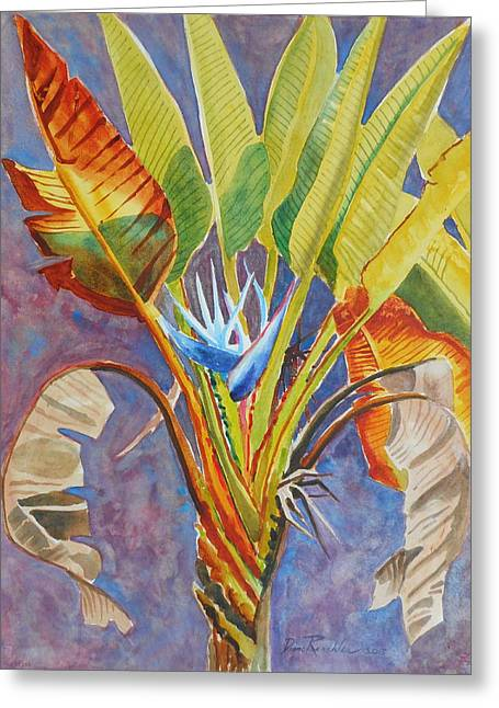Botanical Greeting Cards - Giant White Bird of Paradise Greeting Card by Diane Renchler