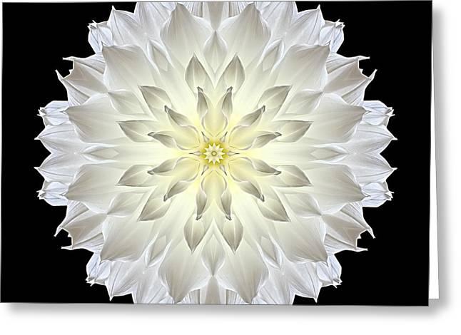 David J Bookbinder Greeting Cards - Giant White Dahlia Flower Mandala Greeting Card by David J Bookbinder