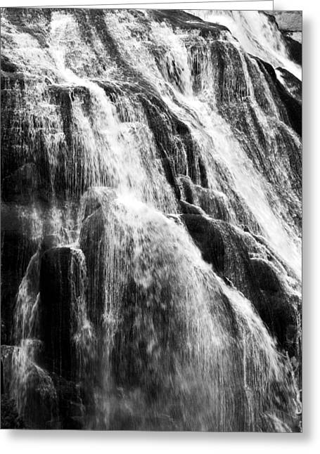 Gibbon Falls Greeting Card by Bill Gallagher