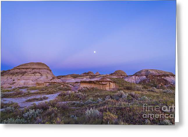 Dinosaur Provincial Park Greeting Cards - Gibbous Moon And Crepuscular Rays Greeting Card by Alan Dyer