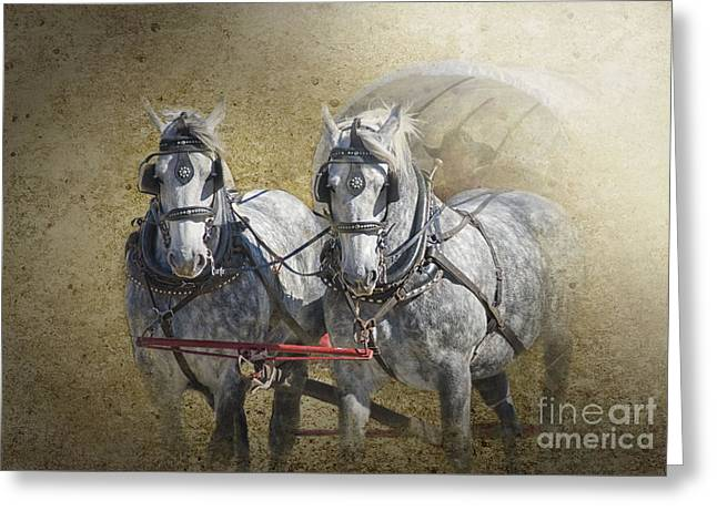 Horse Pulling Wagon Greeting Cards - Giddyup Greeting Card by Betty LaRue