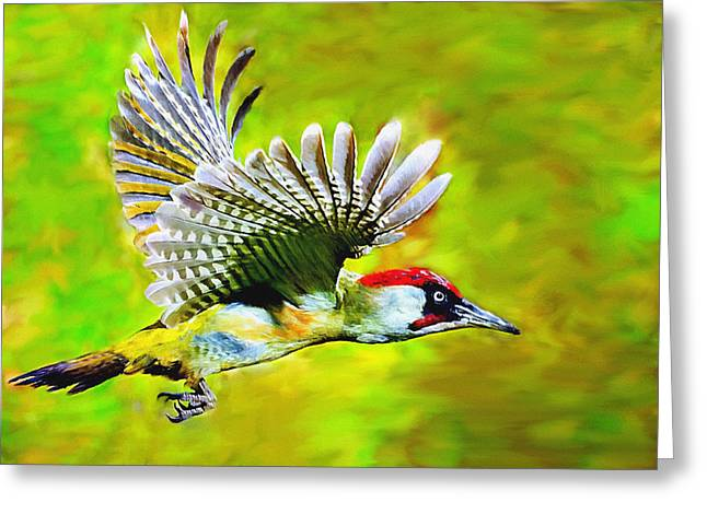 White Digital Art Greeting Cards - Gila Woodpecker Greeting Card by  Bob and Nadine Johnston
