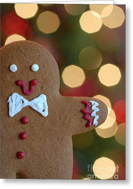 Treat Greeting Cards - Ginger-Bokeh Greeting Card by Amy Cicconi